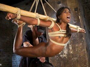 Das fitte schwarze Mädchen Ana Foxx wird in einer BDSM-Session ausgepeitscht und gespielt